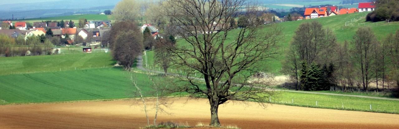 cropped-2004-04-26-020_.jpg